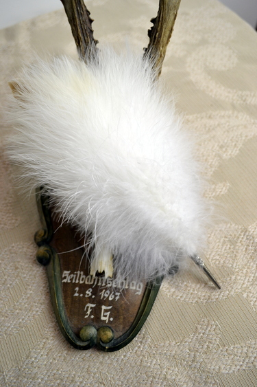 Miesbacher_feather_plume_detail