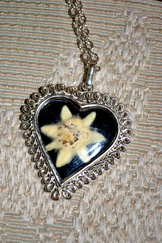 Heart Shaped Pendant Real Edelweiss
