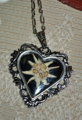 Large Heart Shaped Pendant Real Edelweiss