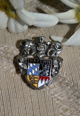 Hat or Lapel Pin Enameled Crest Small