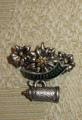 Hat or Lapel Pin Schwaben Club Edelweiss and Stein