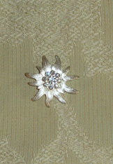 Brooch Silver Edelweiss with Rhinestones Magnetic